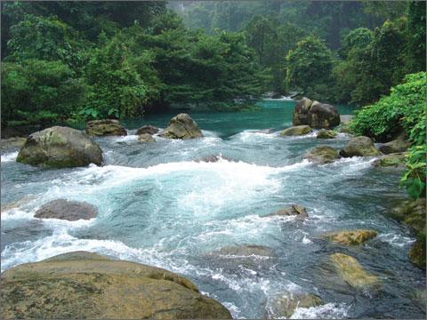 Giải mã giấc mơ thấy dòng suối