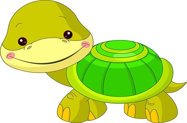 Nằm mơ thấy rùa đánh con số gì