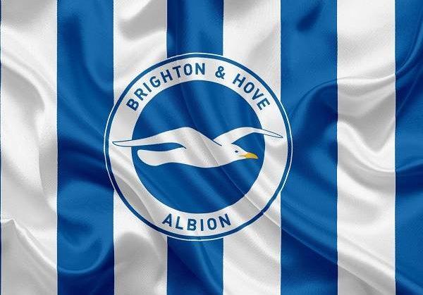 Câu lạc bộ bóng đá Brighton & Hove Albion – Lịch sử, thành tích của CLB